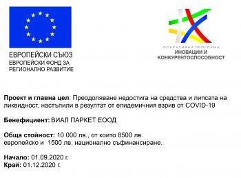 Vial-Parket-проект-евро